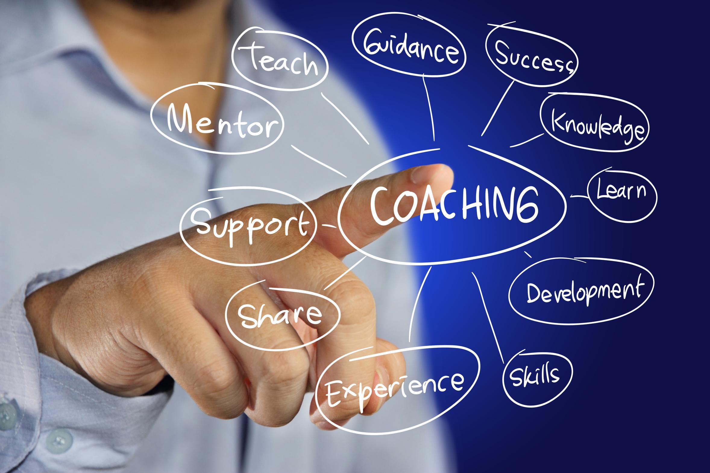 LOGICONS Coaching